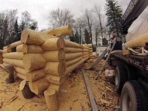 White pine log home under construction