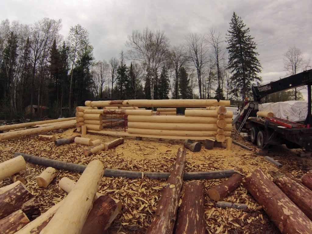 Log home being constructed with white pine